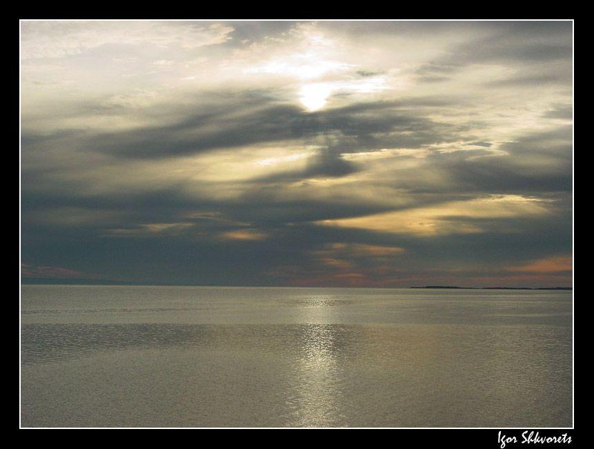 gold-sea