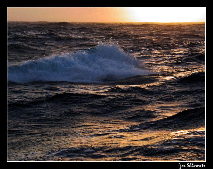 sunsetwave