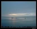 rainy-dawn-at-digby