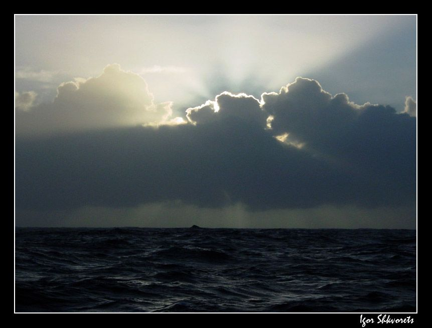 wavelight
